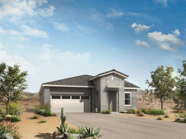 280 E Wisteria Drive, Chandler, AZ 85286 (MLS #5910757) :: Yost Realty Group at RE/MAX Casa Grande