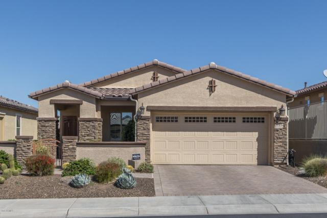 17534 W Glenhaven Drive, Goodyear, AZ 85338 (MLS #5910768) :: Kortright Group - West USA Realty