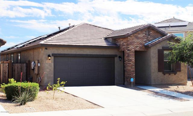 12071 W Desert Sun Lane, Peoria, AZ 85383 (MLS #5910789) :: The W Group