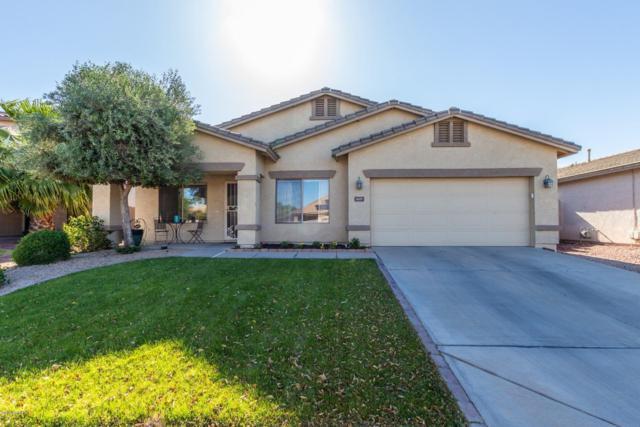 3609 N 127TH Drive, Avondale, AZ 85392 (MLS #5910798) :: Yost Realty Group at RE/MAX Casa Grande