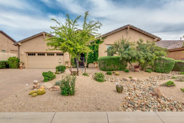 5731 E Ashler Hills Drive, Cave Creek, AZ 85331 (MLS #5910824) :: The Kenny Klaus Team