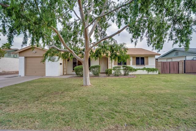 2527 W Corrine Drive, Phoenix, AZ 85029 (MLS #5910835) :: Yost Realty Group at RE/MAX Casa Grande