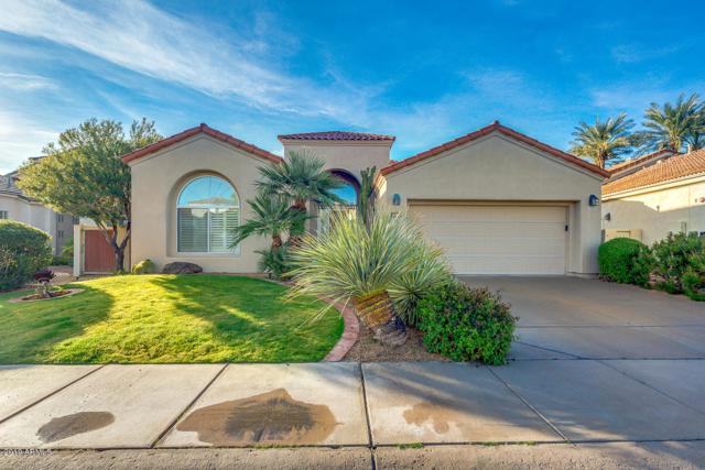11867 E Terra Drive, Scottsdale, AZ 85259 (MLS #5910849) :: The W Group