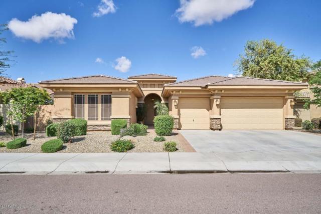 2278 N 157TH Drive, Goodyear, AZ 85395 (MLS #5910851) :: Yost Realty Group at RE/MAX Casa Grande