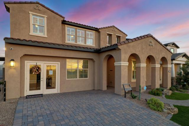 2132 E Alameda Road, Phoenix, AZ 85024 (MLS #5910868) :: The Kenny Klaus Team