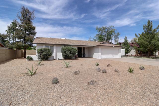 808 E Monte Cristo Avenue, Phoenix, AZ 85022 (MLS #5910886) :: Yost Realty Group at RE/MAX Casa Grande