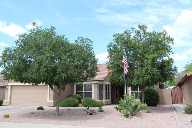3106 E Palm Beach Drive, Chandler, AZ 85249 (MLS #5910890) :: Yost Realty Group at RE/MAX Casa Grande