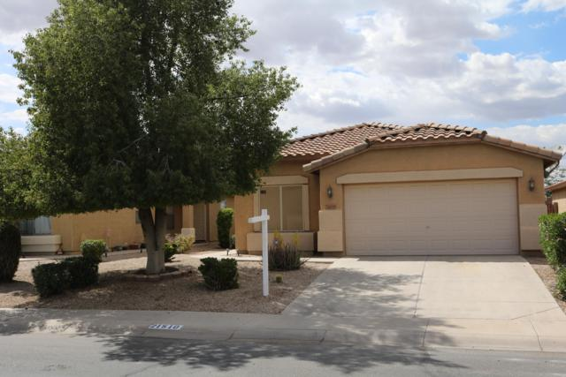 21510 N Duncan Drive, Maricopa, AZ 85138 (MLS #5910896) :: Yost Realty Group at RE/MAX Casa Grande