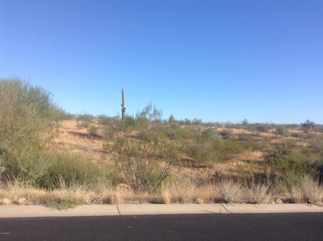 0 Percheron Road, Wickenburg, AZ 85390 (MLS #5910904) :: The Kenny Klaus Team