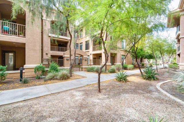 11640 N Tatum Boulevard #1053, Phoenix, AZ 85028 (MLS #5910916) :: Homehelper Consultants