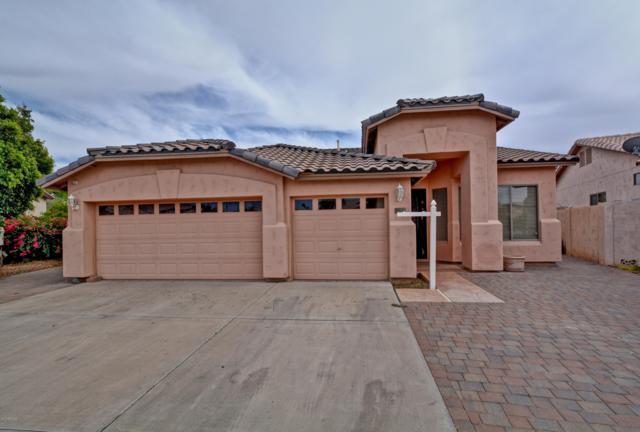 311 W Anderson Avenue, Phoenix, AZ 85023 (MLS #5910950) :: Yost Realty Group at RE/MAX Casa Grande