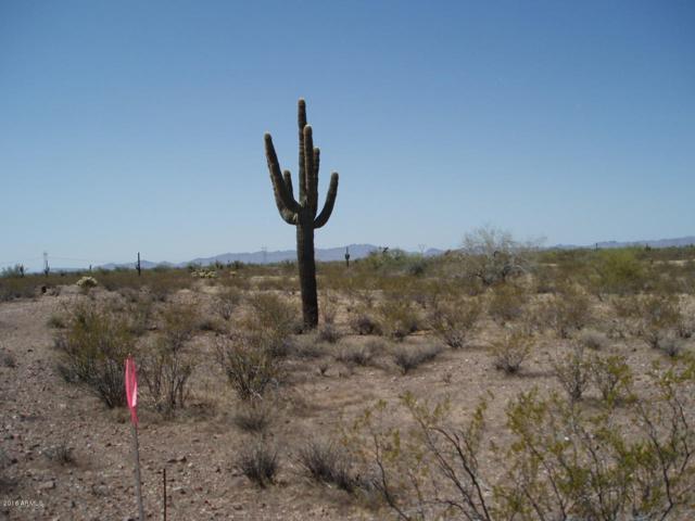 32199 W Olesen Road, Unincorporated County, AZ 85361 (MLS #5911031) :: The Daniel Montez Real Estate Group