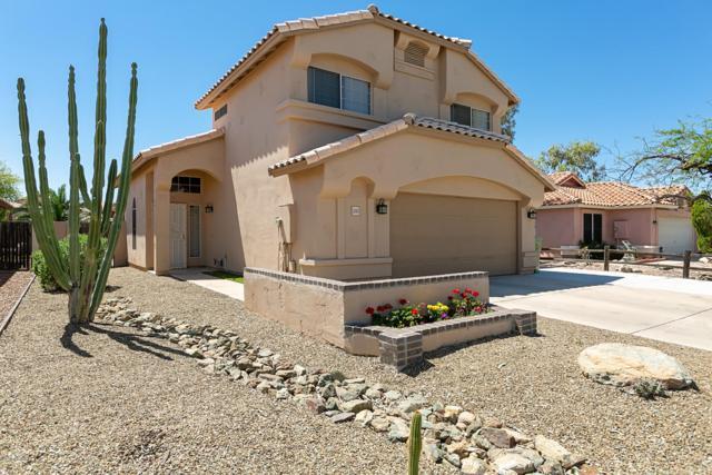 5243 W Piute Avenue, Glendale, AZ 85308 (MLS #5911101) :: Yost Realty Group at RE/MAX Casa Grande