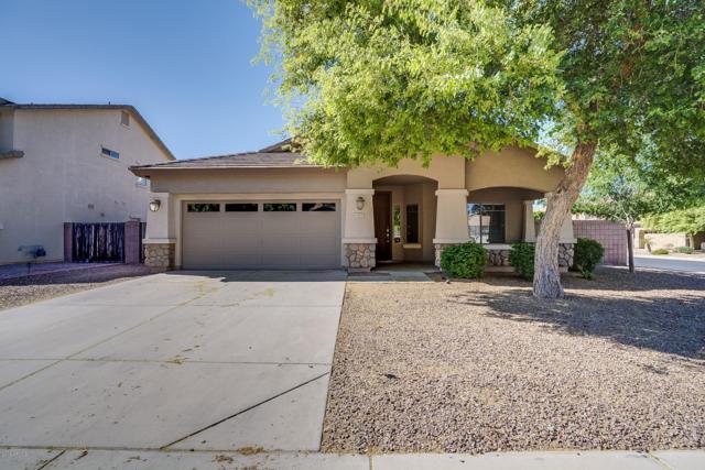 1075 E Locust Drive, Chandler, AZ 85286 (MLS #5911137) :: The Daniel Montez Real Estate Group