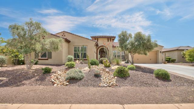 12731 W Calle De Pompas, Peoria, AZ 85383 (MLS #5911164) :: Cindy & Co at My Home Group