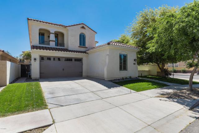 3523 E Windsor Drive, Gilbert, AZ 85296 (MLS #5911166) :: Yost Realty Group at RE/MAX Casa Grande