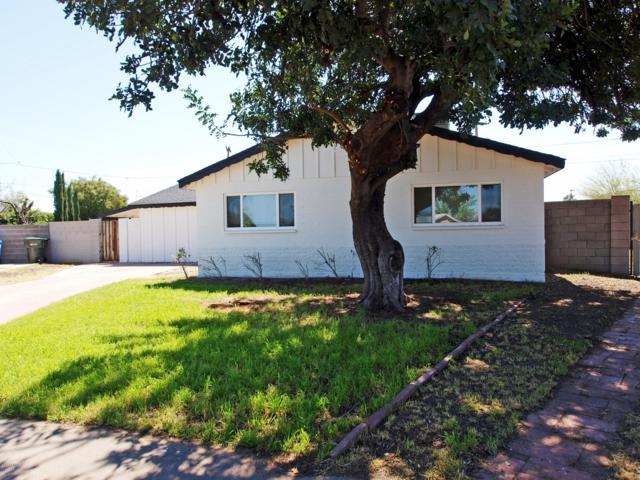 3017 W Windrose Drive, Phoenix, AZ 85029 (MLS #5911175) :: Yost Realty Group at RE/MAX Casa Grande