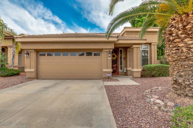 6871 W Potter Drive, Glendale, AZ 85308 (MLS #5911196) :: Yost Realty Group at RE/MAX Casa Grande