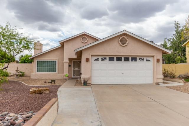 1443 E Wescott Drive, Phoenix, AZ 85024 (MLS #5911199) :: Yost Realty Group at RE/MAX Casa Grande