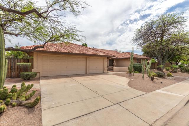 831 N Seton, Mesa, AZ 85205 (MLS #5911264) :: Yost Realty Group at RE/MAX Casa Grande