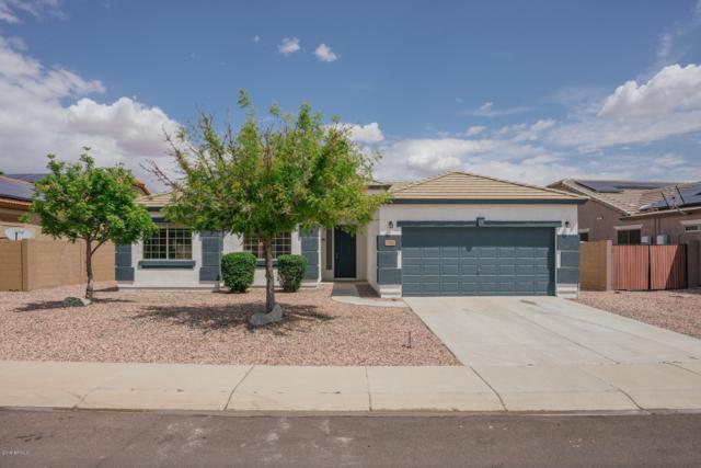 17462 W Crocus Drive, Surprise, AZ 85388 (MLS #5911283) :: Occasio Realty