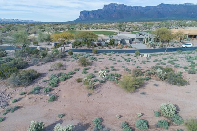 7115 E Wilderness Trail, Gold Canyon, AZ 85118 (MLS #5911292) :: The Bill and Cindy Flowers Team