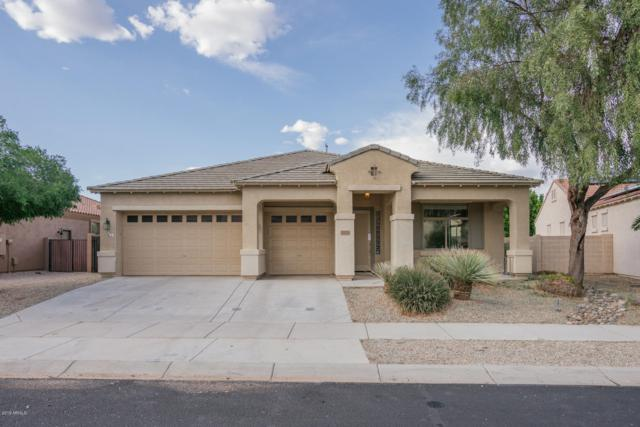 17676 W Surrey Drive, Surprise, AZ 85388 (MLS #5911315) :: The Everest Team at My Home Group