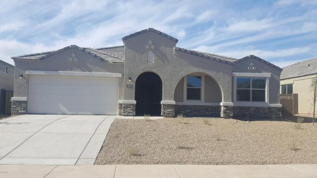 30002 W Freda Lane, Buckeye, AZ 85396 (MLS #5911325) :: Yost Realty Group at RE/MAX Casa Grande