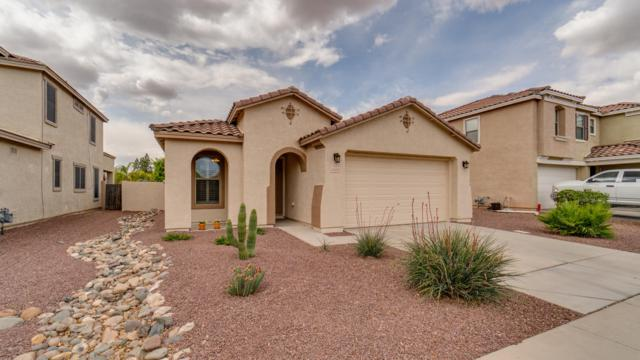 16423 W Prickly Pear Trail, Surprise, AZ 85387 (MLS #5911350) :: Yost Realty Group at RE/MAX Casa Grande