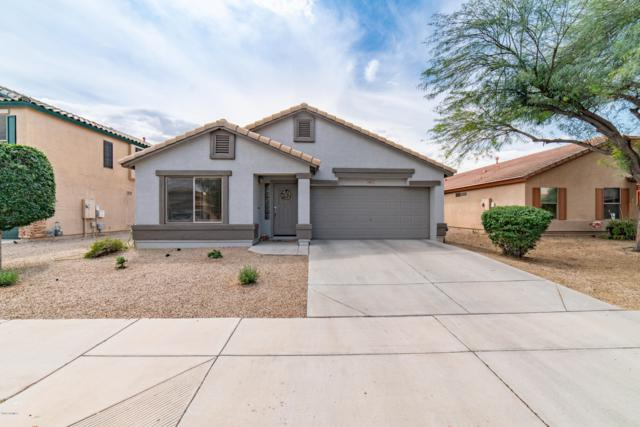 16641 W Moreland Street, Goodyear, AZ 85338 (MLS #5911351) :: Yost Realty Group at RE/MAX Casa Grande