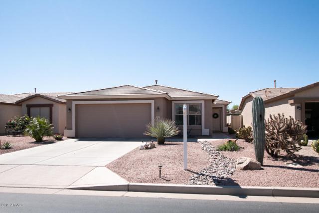 3429 E Hazeltine Way, Chandler, AZ 85249 (MLS #5911356) :: Yost Realty Group at RE/MAX Casa Grande