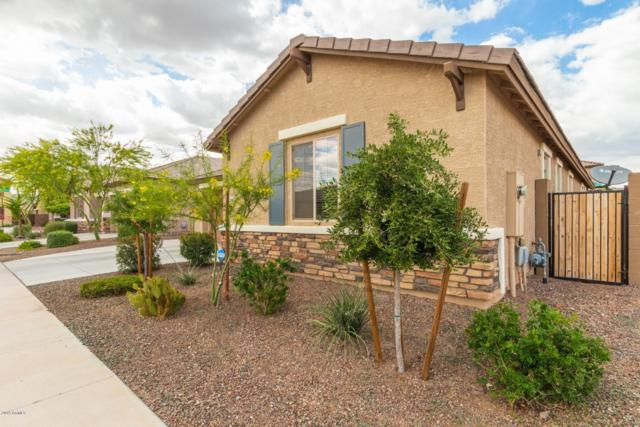 21450 W Almeria Road, Buckeye, AZ 85396 (MLS #5911385) :: The Everest Team at My Home Group