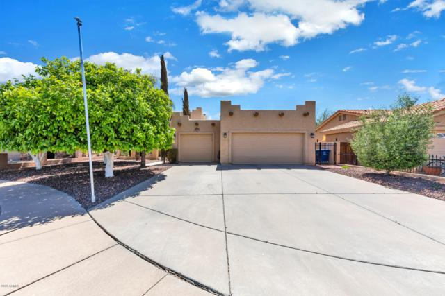 21413 E Via Del Palo, Queen Creek, AZ 85142 (MLS #5911395) :: Yost Realty Group at RE/MAX Casa Grande