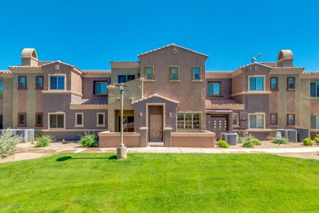 3935 E Rough Rider Road #1177, Phoenix, AZ 85050 (MLS #5911427) :: Yost Realty Group at RE/MAX Casa Grande
