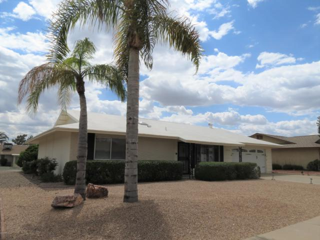9551 W Willowbrook Drive, Sun City, AZ 85373 (MLS #5911505) :: Riddle Realty