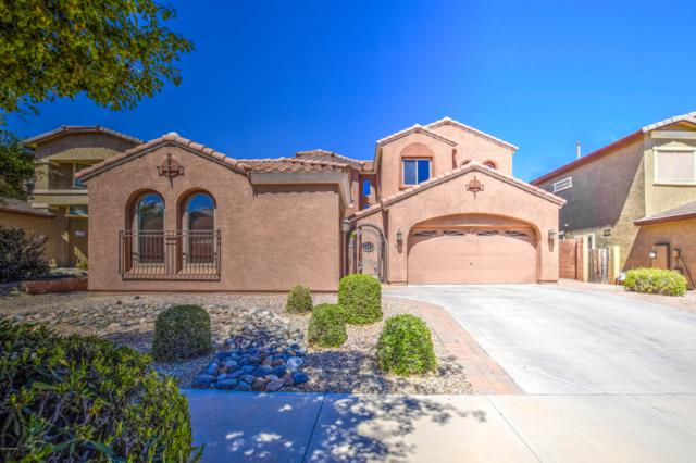 16064 W Yucatan Drive, Surprise, AZ 85379 (MLS #5911508) :: Yost Realty Group at RE/MAX Casa Grande