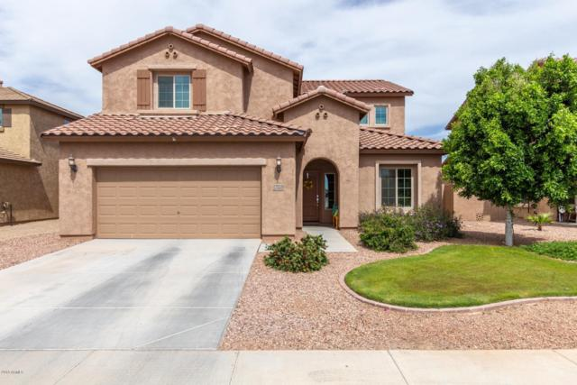 4959 S Parkwood, Mesa, AZ 85212 (MLS #5911655) :: Riddle Realty