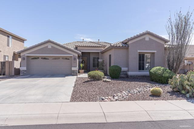 7131 W Bronco Trail, Peoria, AZ 85383 (MLS #5911676) :: Yost Realty Group at RE/MAX Casa Grande
