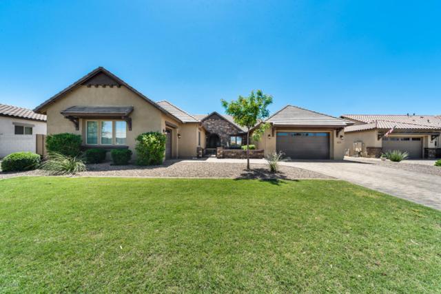 1119 E Via Sicilia, San Tan Valley, AZ 85140 (MLS #5911680) :: CC & Co. Real Estate Team