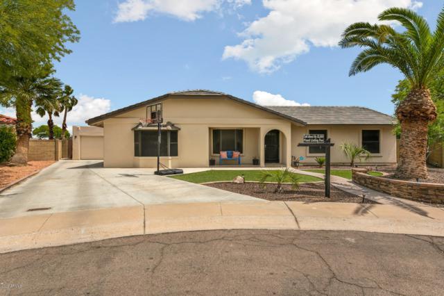 3949 E Tano Street, Phoenix, AZ 85044 (MLS #5911683) :: Power Realty Group Model Home Center