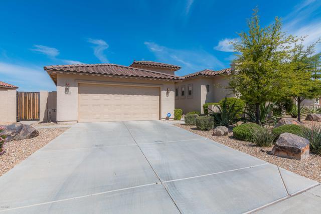 17634 W Verdin Road, Goodyear, AZ 85338 (MLS #5911737) :: Lucido Agency