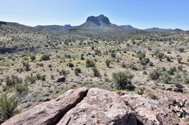 -- Knight Creek Road, Kingman, AZ 86401 (MLS #5911777) :: The Results Group