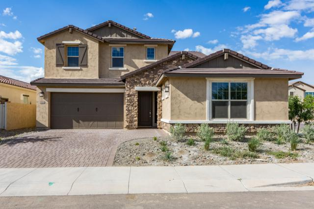 9708 E Tungsten Drive, Mesa, AZ 85212 (MLS #5911865) :: Yost Realty Group at RE/MAX Casa Grande
