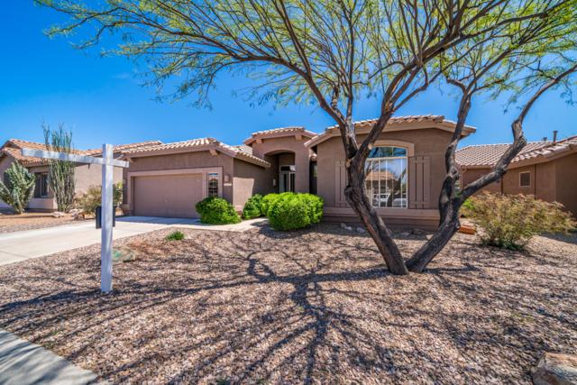 5671 S Desert Ocotillo Drive, Gold Canyon, AZ 85118 (MLS #5911883) :: The Bill and Cindy Flowers Team