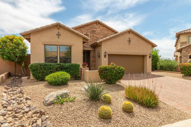 6939 E Roland Street, Mesa, AZ 85207 (MLS #5911906) :: The Bill and Cindy Flowers Team