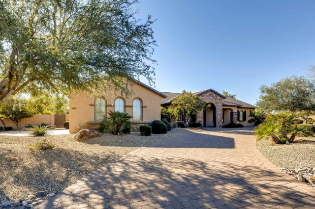 14429 W Desert Cove Road, Surprise, AZ 85379 (MLS #5911920) :: Yost Realty Group at RE/MAX Casa Grande