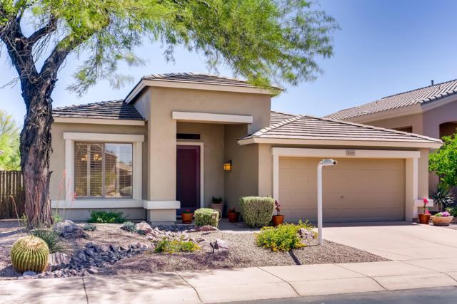 22259 N 51ST Street, Phoenix, AZ 85054 (MLS #5911961) :: Yost Realty Group at RE/MAX Casa Grande