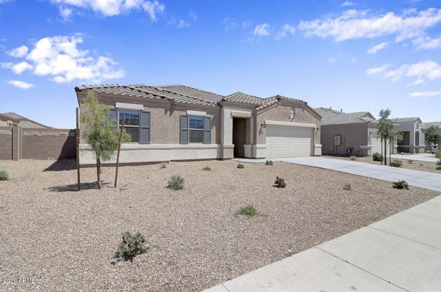 30638 W Mulberry Drive, Buckeye, AZ 85396 (MLS #5911993) :: The Results Group