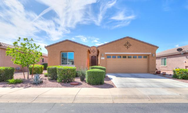 42677 W Kingfisher Drive, Maricopa, AZ 85138 (MLS #5912045) :: Occasio Realty