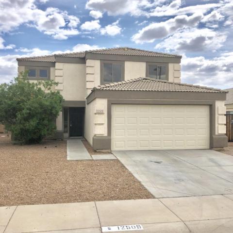 12509 N 123RD Drive, El Mirage, AZ 85335 (MLS #5912069) :: Yost Realty Group at RE/MAX Casa Grande